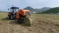 Agriculture : Des balles de foin pour le bétail
