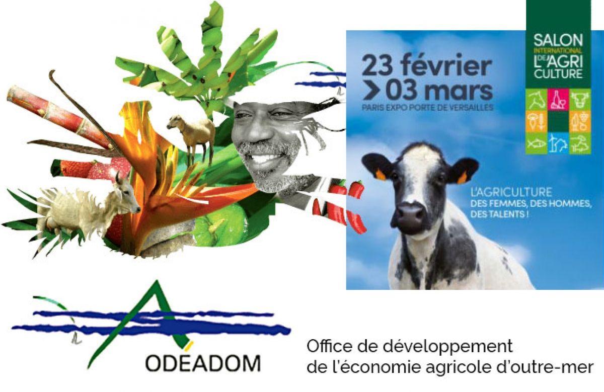 La CCISM offre des entrées au Salon de l'Agriculture de Paris