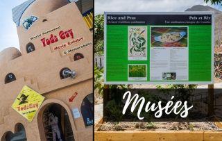 Les Musées, plateformes culturelles : l'avenir de la tradition