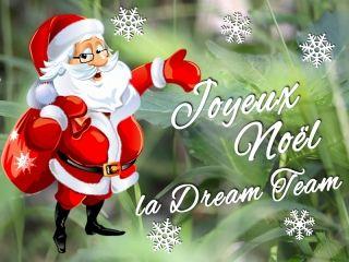 Balade de Noël avec Dream of Trail