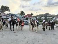 Stage équitation et défilé costumé