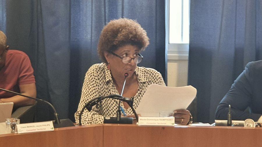 Marie-dominique Ramphort, conseillère territoriale en charge de la commission des finances a exposé aux élus les grandes lignes du budget pour l'année 2020