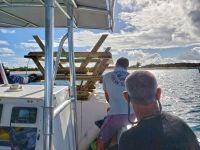 La Réserve Naturelle installe des tables de pique-nique à Tintamarre