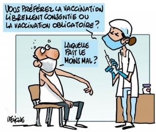 Obligation vaccinale : Un délai accordé à Saint-Martin