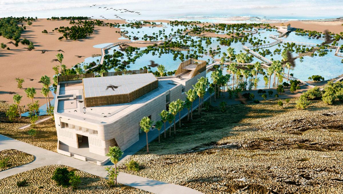 Un Institut Caribéen de la Biodiversité Insulaire dans les starting-blocks