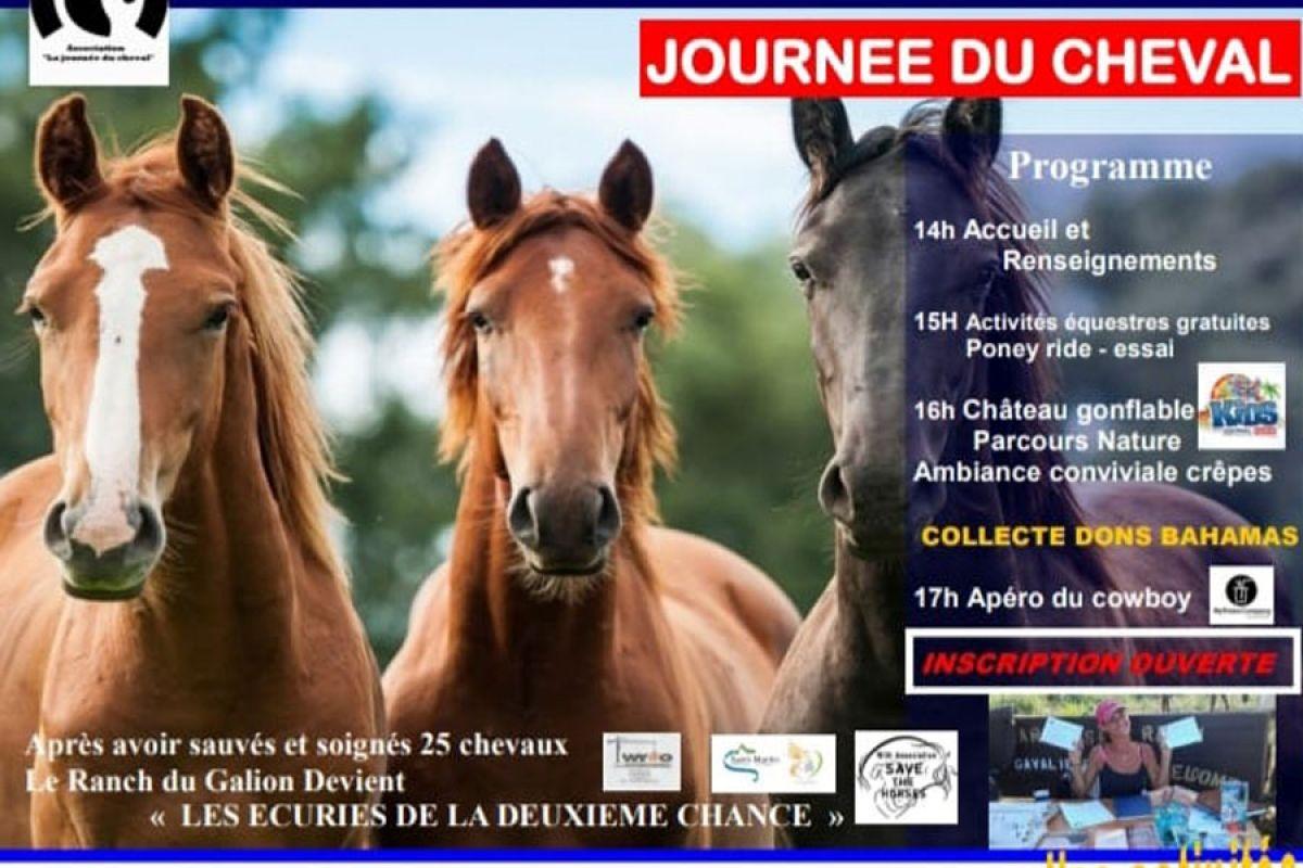 Journée du cheval : activités gratuites