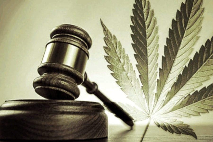 Justice : Deux condamnations pour détention  et usage de produits stupéfiants infligées à des habitants de Saint-Barthélemy